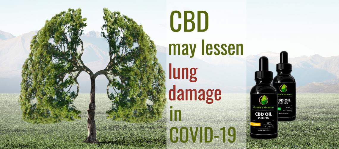 cbd-covid-19